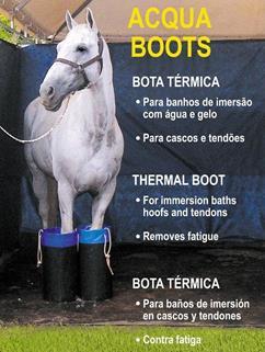 O atributo alt desta imagem está vazio. O nome do arquivo é Acqua-Boots-1-Copy.jpg